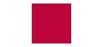 logo DRIC 1